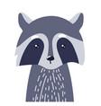 raccoon cute animal baby face vector image vector image