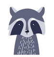 raccoon cute animal baface vector image