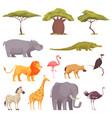 safari flora fauna set vector image