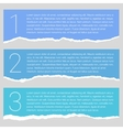 set lacerated colorful papers vector image