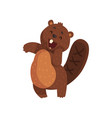 shy little beaver with cute muzzle adorable vector image