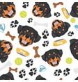 smiling dog rottweiler vector image vector image