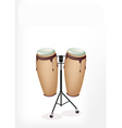 Beautiful Congas with Stand on White Background vector image