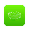 bird nest with eggs icon green vector image vector image