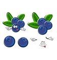 Cartoon blueberry fruits character with leaves vector image vector image