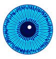eye iris icon vector image