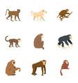 monkey icon set flat style vector image