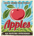 Retro vintage apple crate label vector image vector image