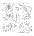 rose set icons vector image