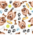 smiling dog yorkshire terrier vector image vector image