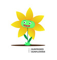 sunflower flat vector image