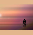 a fabulous sunset on the sea father and son vector image vector image