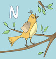 alphabet letter n and nightingale abc vector image vector image