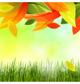 autumn background with color leaves and grass vector image vector image