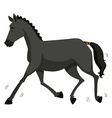 Black horse running alone vector image