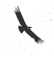 flying condor silhouette on white background vector image