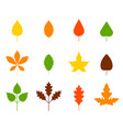 set autumn leaves isolated on white vector image vector image