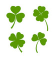 set of green clover leaves on white background vector image