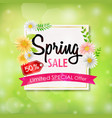 spring sale background banner with beautiful color vector image