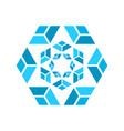 a fractal shape vector image vector image