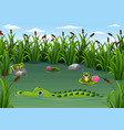 cartoon alligator and frogs in the pond vector image vector image