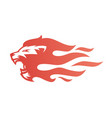 lion fire flame logo tattoo vector image