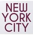 Stock typography New York City vector image