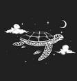 turtle flies in night sky vector image vector image