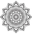 drawing of floral round lace mandala vector image