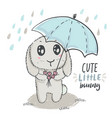 hand drawn cute rabbit with umbrella vector image