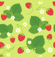 seamless pattern of strawberry bushes vector image