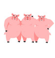 three pig for fairy tale piglets on white vector image vector image