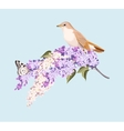 Bird and branch of lilac vector image