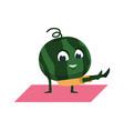 fruit yoga mascot on gymnastic mat watermelon vector image
