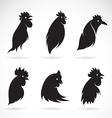image an chicken head vector image vector image