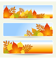 leaves banners empty vector image vector image