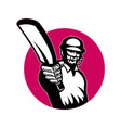 retro cricket icon vector image vector image