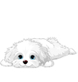 White Puppy vector image vector image