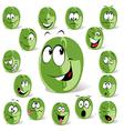 green coffee bean vector image