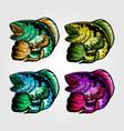 channa snakehead fish vintage logo design vector image