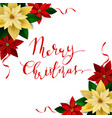 christmas decoration on white vector image