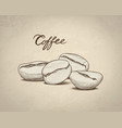 coffee beans sketch drink banner line art vector image vector image