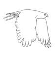 eagle line art 07 vector image vector image