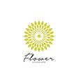 Flower logo design abstract