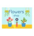 Flowers shop facade vector image vector image