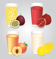 Fresh Fruits Juice in Glasses Set vector image vector image