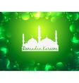 glowing ramadan kareem background vector image vector image