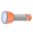 home flashlight icon cartoon style vector image