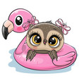 owl in swimming on pool ring inflatable flamingo vector image