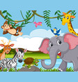 wild animal living next to the river vector image vector image